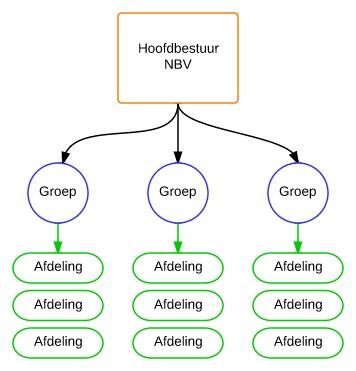 NBV verenigingsstructuur