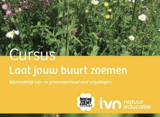 Cursus Laat je tuin en buurt zoemen