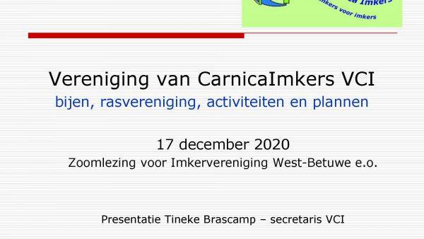 Zoomlezing-Tineke-Brascamp-17-dec-2020